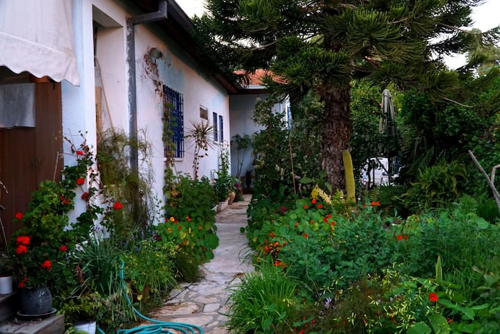 Charming house with a big garden
