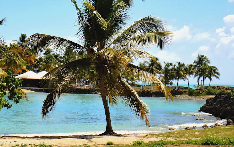 Appart accès direct plage à le Gosier