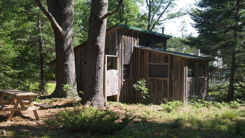 Two Pines Cabin on saltwater homestead