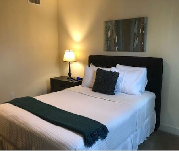 One Bedroom Apartment at Domain Shopping Center