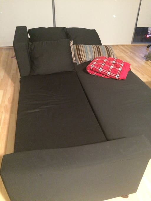 The sofa bed.