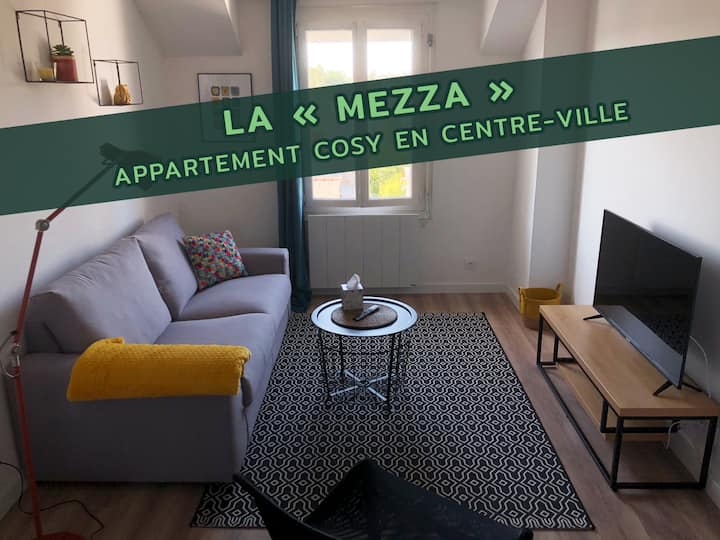 Appartement cosy situé en centre-ville (Mezza)