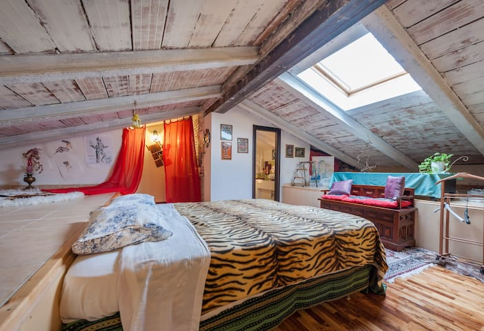 Room rental in Brand new attic in Florence