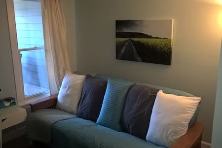 Cozy, private room: short walk to Mass Ave - Indianapolis - Apartment
