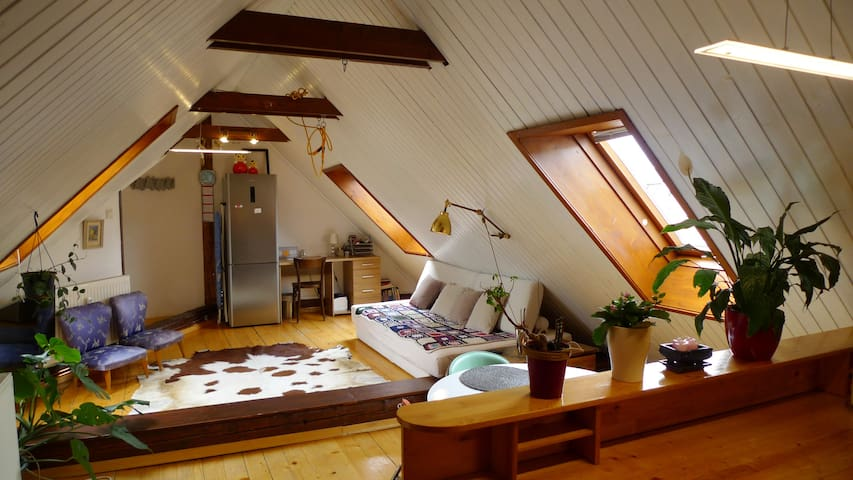 Dove's loft in the heart of Ljubljana