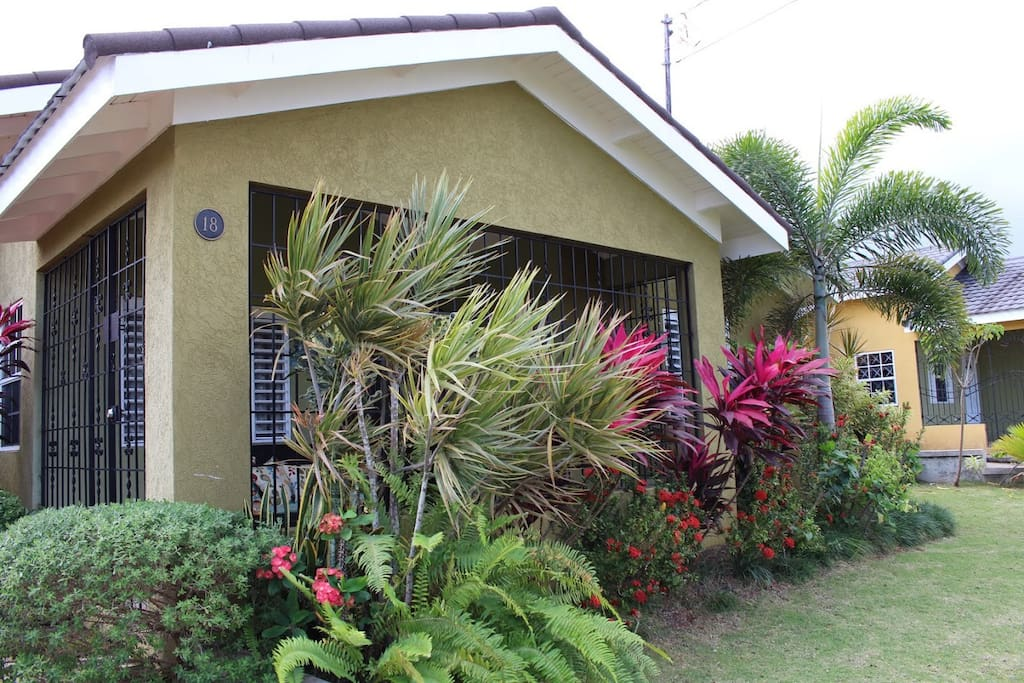 Front Yard with tropical flowers
