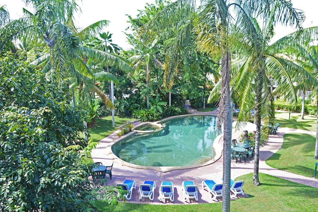 Salt water pool in our tropical garden