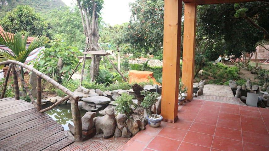 Vietnamese designed Room in the Green Eco-Complex