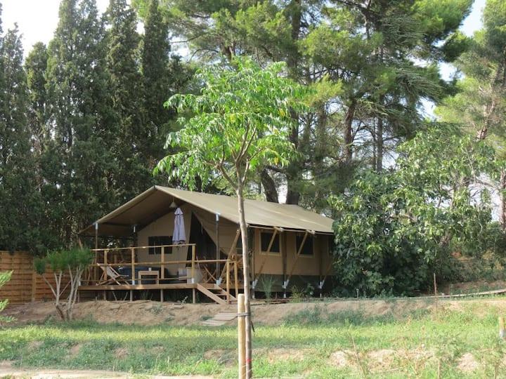"""Le Siestou - Lodge safari """"SYRAH"""""""
