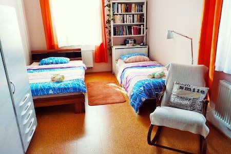 Apartment at Slezské Předměstí