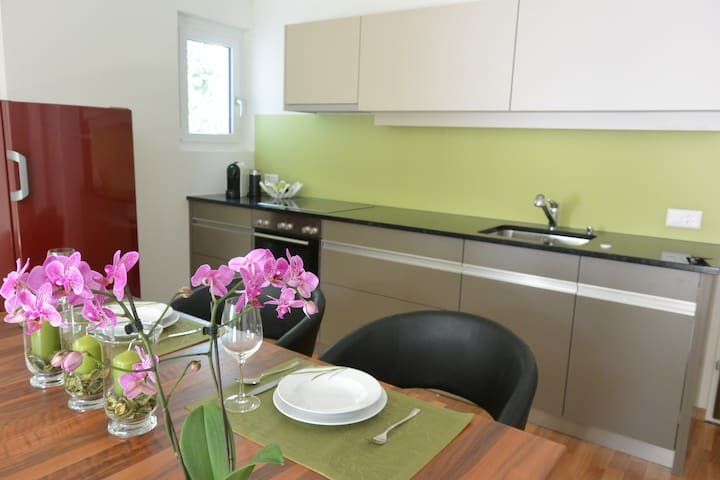 Business Apartment Deluxe - Schaan - Apartament