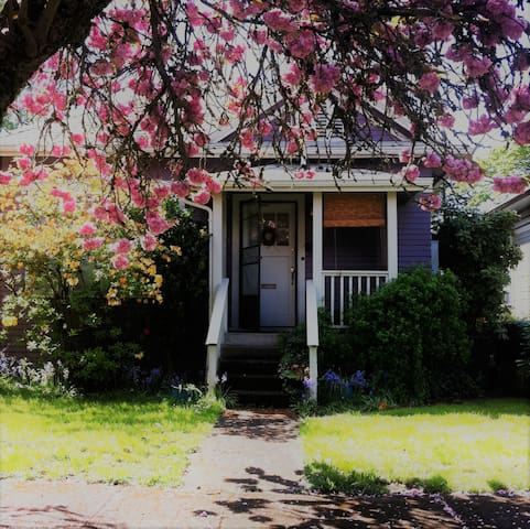 Historic Cottage close to downtown for Eclipse