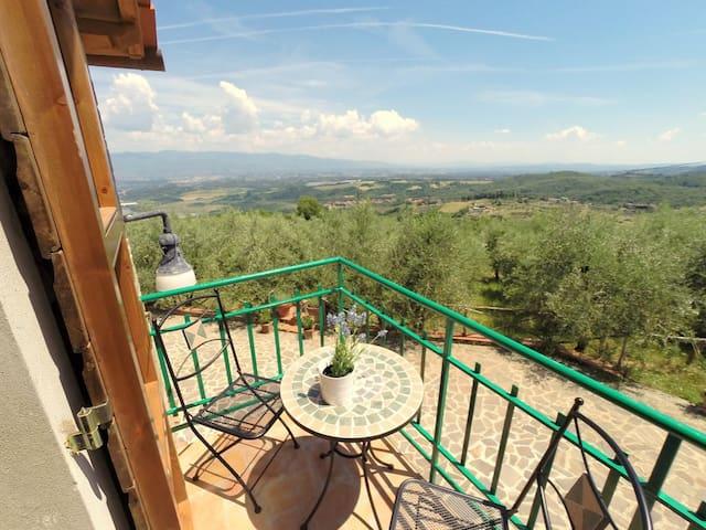 Chianti-Villa Poggio Oliveto - Castelnuovo dei Sabbioni - House