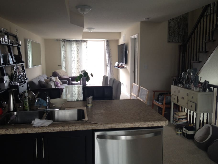 Shared Open concept kitchen, dining, living/family