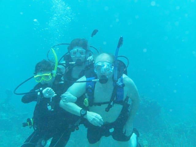 TERRIFIC scuba diving....right off the beach.