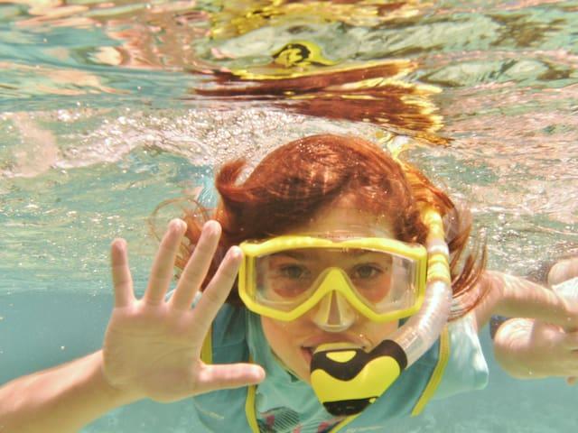 Great snorkeling...a short swim, kayak or boat ride away
