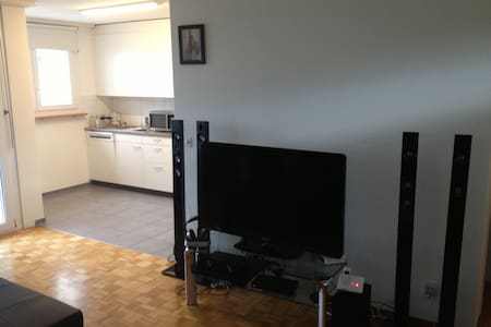 Top Floor studio 1.5 in ZH center  - Apartamento