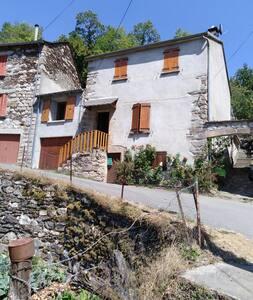 un petit village gaulois