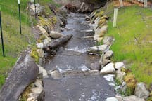 This salmon ladder, built by us, is part of the environmental restoration efforts ongoing on our 140 acres.