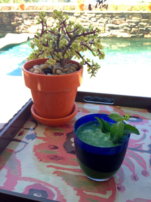 Morning Super Green Smoothie for our guest by the pool.