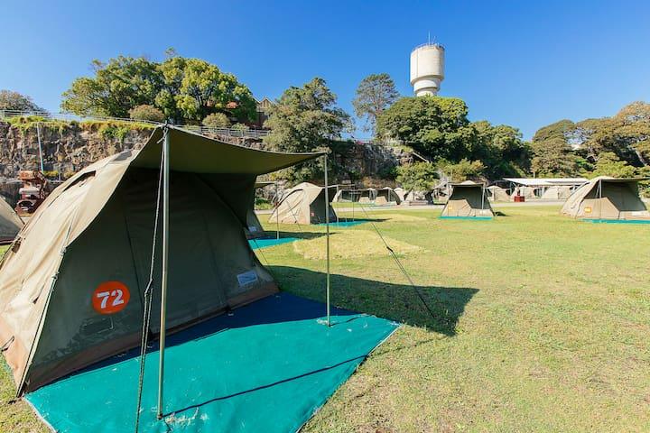 Cockatoo Island - Camping 1.