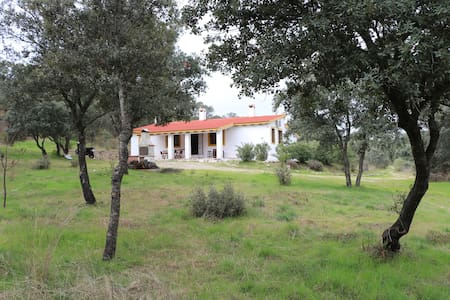 Finca rustica de 100 hectareas a 50 km de toledo - Maqueda - House