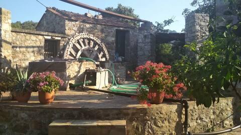 Caravena Villas - House No3 for rent in Kardamyla