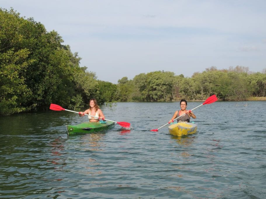7 minute paddle down estuary river to beach