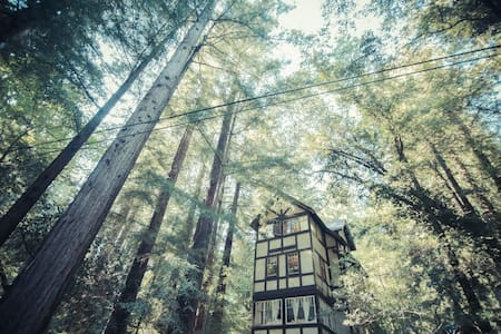Cozy 1-BD Redwood Treehouse Retreat - Mill Valley