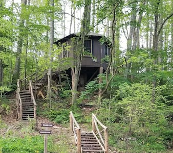 Tree Top Cabin at Healing Springs