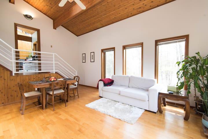 Living room with big windows, skylights