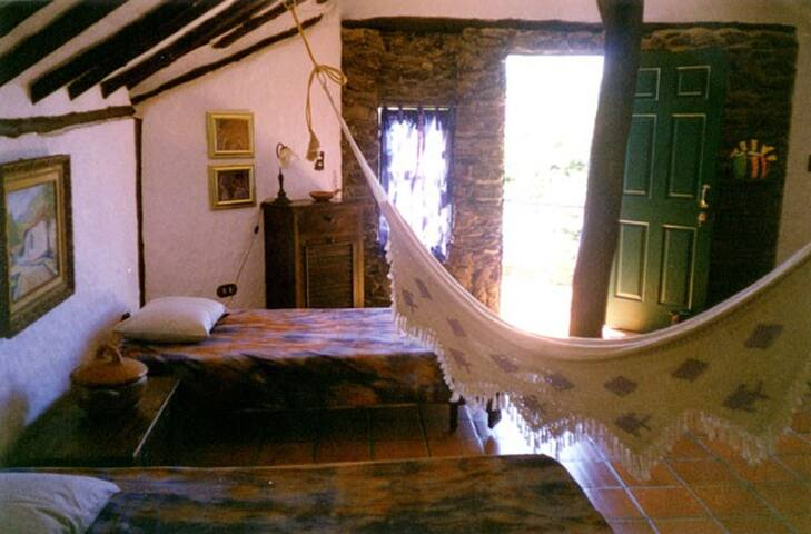 Large cabin with hammock