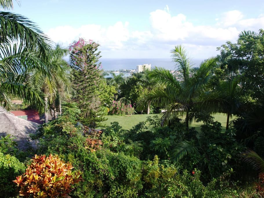ocho rios buddhist singles Take a look at our picks for the best adult-only resorts in jamaica  19-acre ocho rios all-inclusive  best all-inclusive resorts in the caribbean for single.