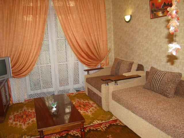 Однокомнатная студия в центре город - Запорожье - Apartment