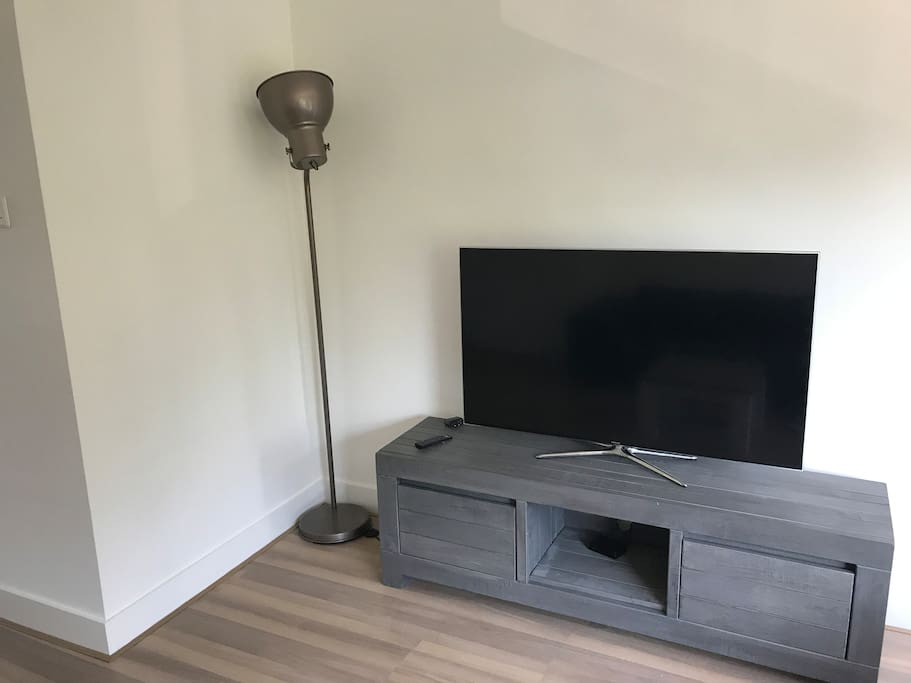 55'' Full HD with netflix and international television