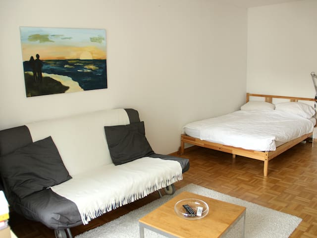 Apartment Downtown - Friburgo - Apartamento