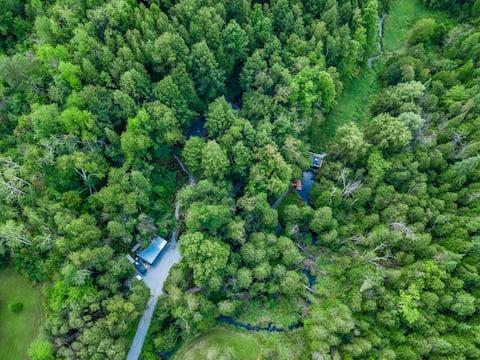 Деревянный пансион в лесу