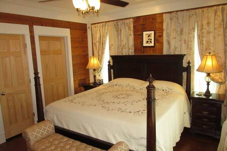 Historic Montrose home - Houston - Bed & Breakfast