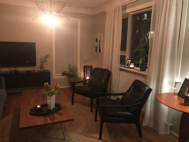 Warm and cozy Reykjavík apartment