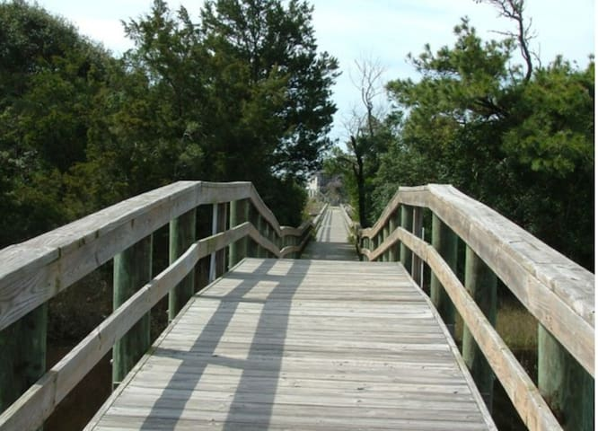 Scenic walk way that leads to the beach.