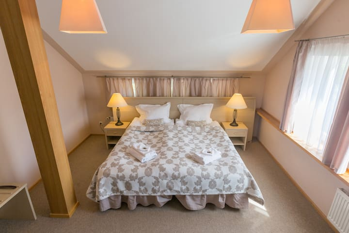 Double or Twin Room-Boutique Hotel Roze (5)