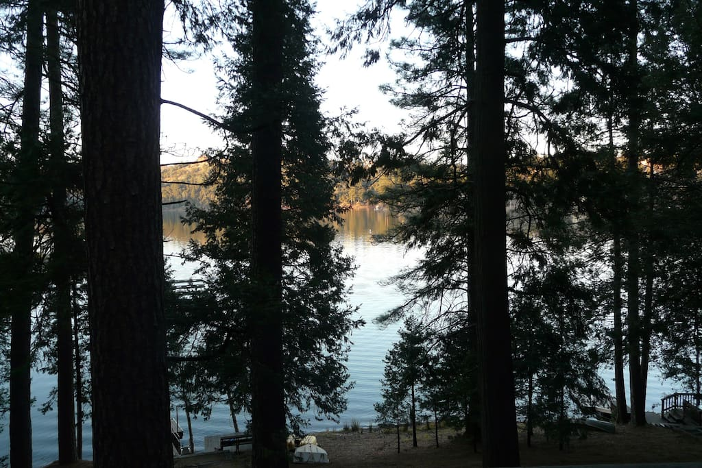 Lake view from our home, nestled and shaded in the woods but enjoy sun on the dock and deck.