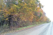 Take a scenic ride around the area to view the Fall foliage.