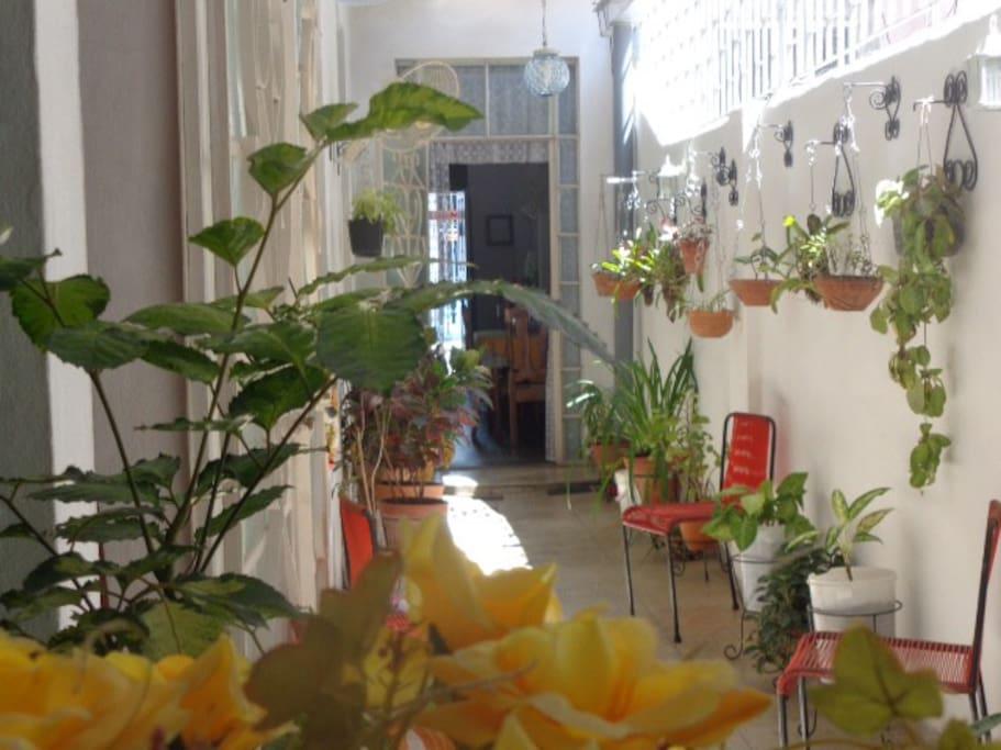 El toque verde y las flores hacen de este espacio un pequeño jardín dentro del hogar.
