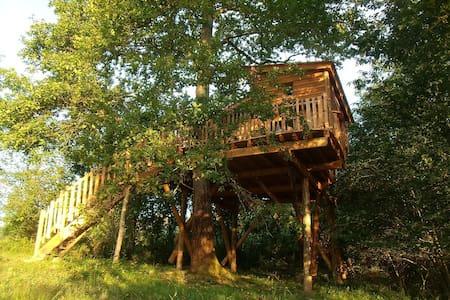 Cabane dans les arbres avec spa  - Gan