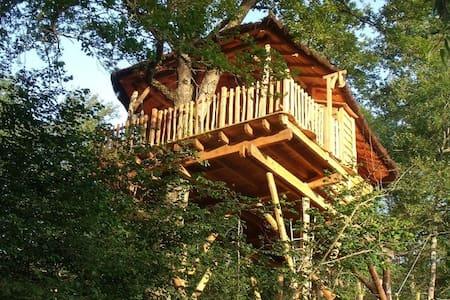 La cabane du ruisseau - Zomerhuis/Cottage