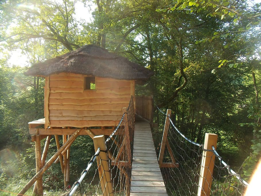Une passerelle suspendue pour accéder à la cabane