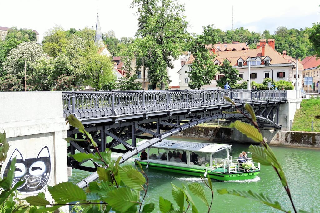 View of the house from Ljubljanica