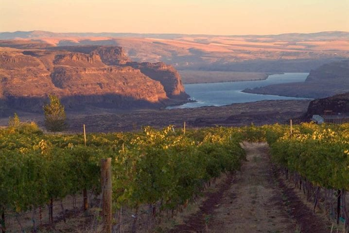 Less than an hour drive to more than 20 of Washington's finest vineyards and wine tasting rooms!