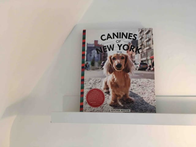 New York City side table books